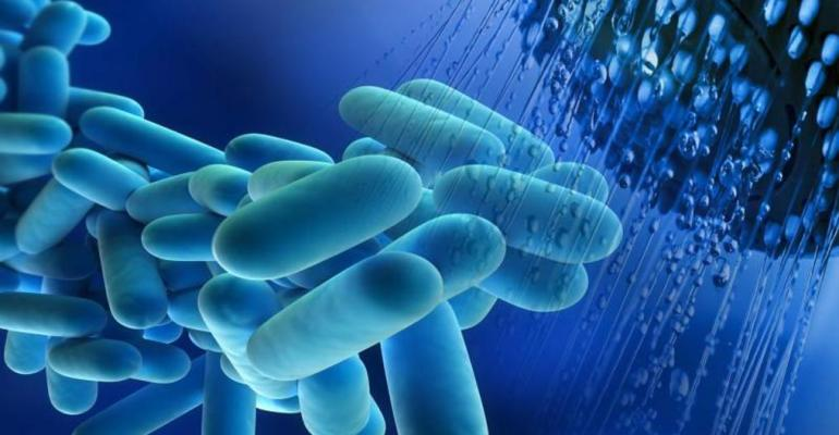 Legionella: a dangerous bacterium to avoid